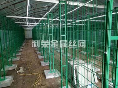 重庆食用菌网格